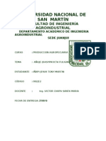 PRODUCCION AGROPECUARIA(AÑUJE)