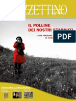 Gazzettino Senese n° 147