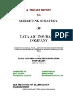 TATA AIG INSURANCE COMPANY MARKETING STRATEGIES