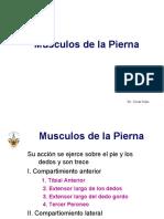 001 Musculos de la Pierna