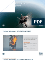 Gulf of Mexico Accident and its impact on Pre-Salt development
