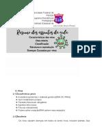 #4 - Vírus - Classificação e patologias-