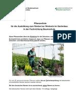 2019 Pflanzenliste Werker Baumschule 2
