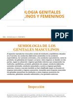 Semiologia Genitales Masculinos y Femeninos