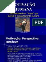 PALESTRA MOTIVACAO HUMANA 08 by cleber