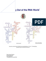 2 Crawling Out of the RNA World