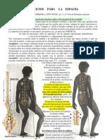 Auto-Ejercicio para la Espalda- Fácil y Efectiva Técnica Descrptiva.