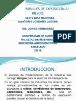LIMITES PERMISIBLES DE EXPOSICION AL RIESGO