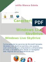 Características de SkyDrive