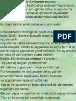 KOYUNDA ÖSTRUS SENKRANİZASYONU