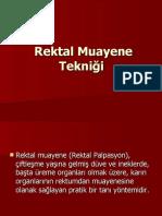 REKTAL MUAYENE