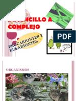 DE SENCILLO A COMPLEJO