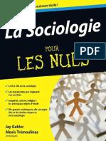 La Sociologie Pour Les Nuls (Fr - Jay Gabler