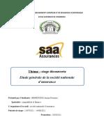 rapport de stage en SAA