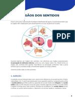 BIO_AP_Fisiologia Humana_Órgãos dos Sentidos
