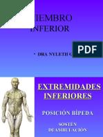 HUESOS MIEMBRO INFERIOR SLIDESHARE
