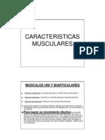 CARACTERISTICAS MUSCULARES