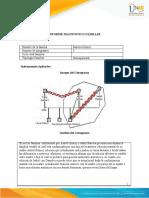 Anexo 4 - Formato Informe Diagnostico Familiar