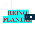ReinoPlantae_