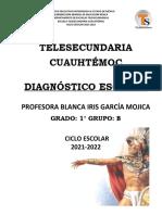 ANÁLISIS  DEL DIAGNÓSTICO