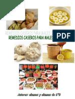 remedios caseros en pdf