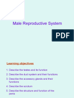 M. Repro sys (foundation)
