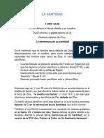 La Santidad PDF