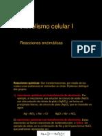Clase 3 Metabolismo celular I