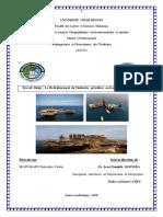 Travail dirigé sur l'industrie pétrolière au Gabon