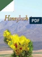 Honeybush06