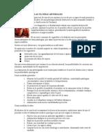 TRATAMIENTO DE LAS ÚLCERAS ARTERIALES.doc