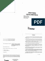P.E. VION - ANATOMIA CEFALOMÉTRICA