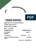 1040070113_TERM PAPER