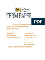 1040070148_Revised TERM  PAPER