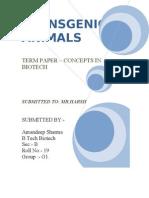 1040070151_TERM PAPER