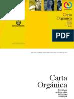 Carta Organica 1