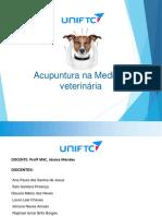 Acupuntura em Medicina Veterinaria