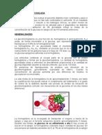 Hemoglobina_Glicosilada[1][1]
