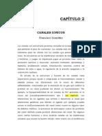 Canales_ionicos_FGonzalez