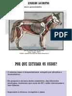 Osteologia Introd. 2020