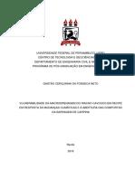 DISSERTAÇÃO Gastão da Fonseca Neto _ Drenagem Cavouco