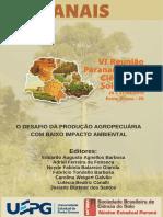 2019 Anais Da Vi Rpcs