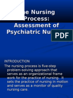 The Nursing Process.powerpoint