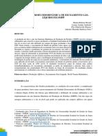 Análise Termofluidodinâmica de Escoamento Gás-Líquido em SMPP