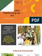 ICO_Instruções para Trabalho em grupo -  ICO