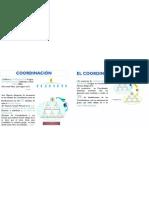 Coordinacion y Coordinador Diamante