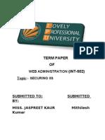 WEB term paper