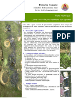 phytophtora-agrume-ft-lutte_sdr-BTeikihuavanaka-TVotaPinson_200910
