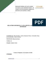 relatório volume e densidade