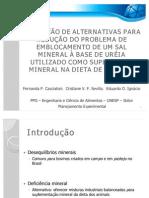 Seminário Sal mineral